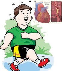 olahraga jantung sehat teratur
