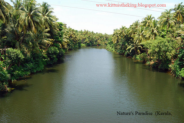 essay on natural beauty of kerala in malayalam The state experiences several natural hazards like of entertainment and information for the people of kerala a malayalam version of google news was.