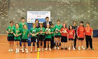 Campeonato de Asturias alevín temporada 2012-2013