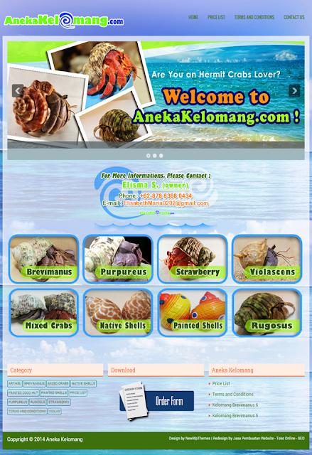 bikin website murah di jakarta, jasa buat web murah, jasa pembuatan website