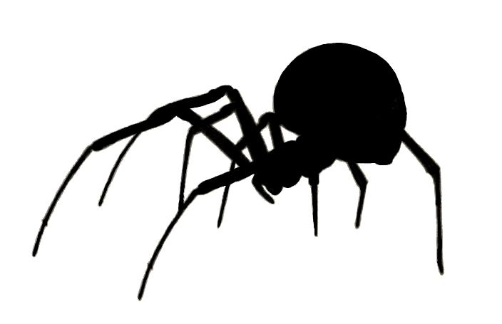 black widow spider silhouette - photo #39