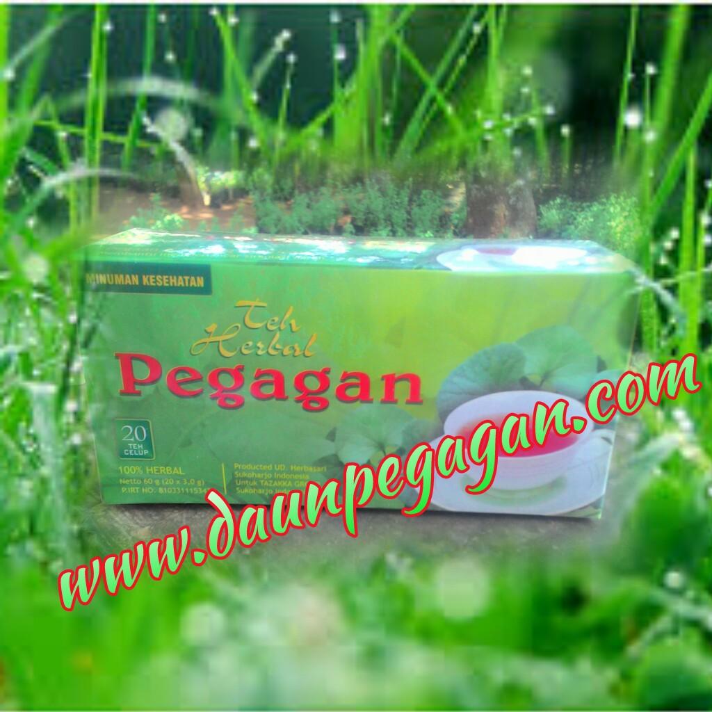 Teh Pegagan