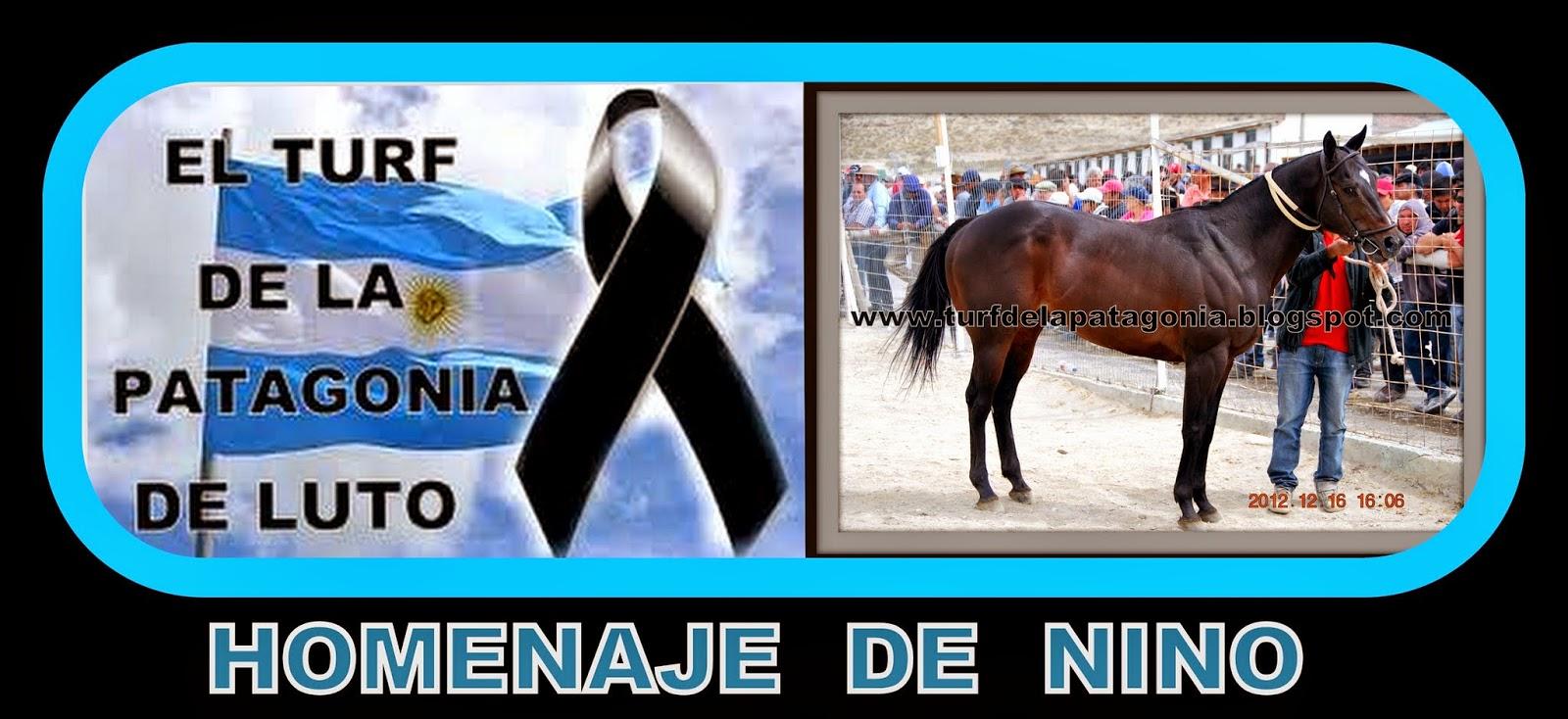 http://turfdelapatagonia.blogspot.com.ar/2014/09/homenaje-de-nino.html