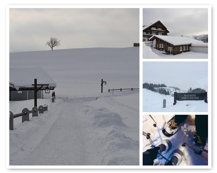 haubers, haubers alpenresort, grinestern