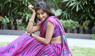 Actress Akshaya  Saree Pictures at Adi Lekka Movie Audio Success Meet  0129.jpg