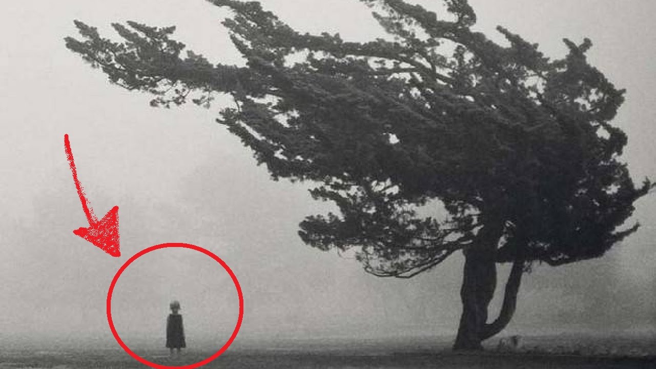 Fake or true , these photos manage to creep us out!