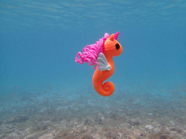 Lala-oopsie sea horse underwater
