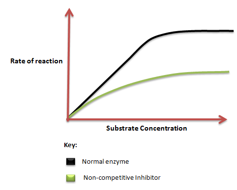 Competitive vs Non-Competitive Inhibition | Science Decoder