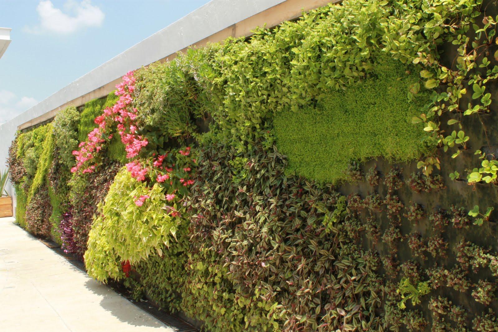 Jardines verticales yves muro verde en andares for Muros verdes verticales