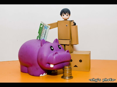 best-picture-of-Danbo-with-money
