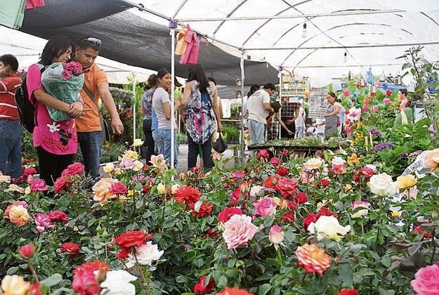 Feria de la Flor Cuernavaca, Morelos