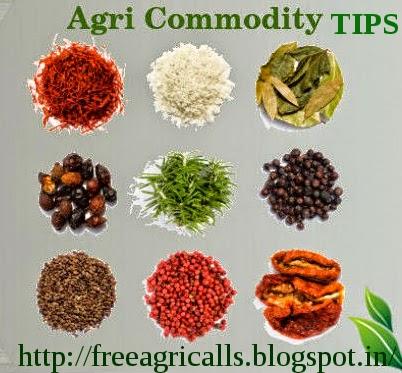 Agri Commodity Tips , Best NCDEX Tips Provider , Agri Commodity Trading , Agri Trading Tips , Chana Tips, Dhaniya Tips, Soyabean Tips, Turmeric Tips