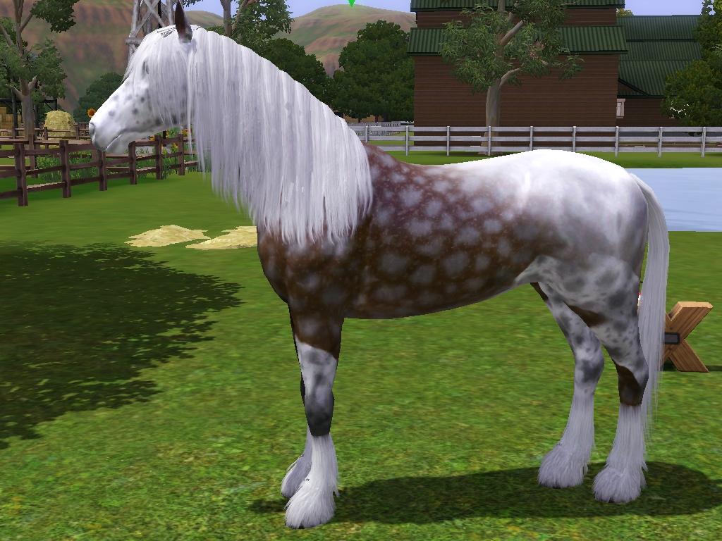 Дополнение Для Лошадей В Симс 3