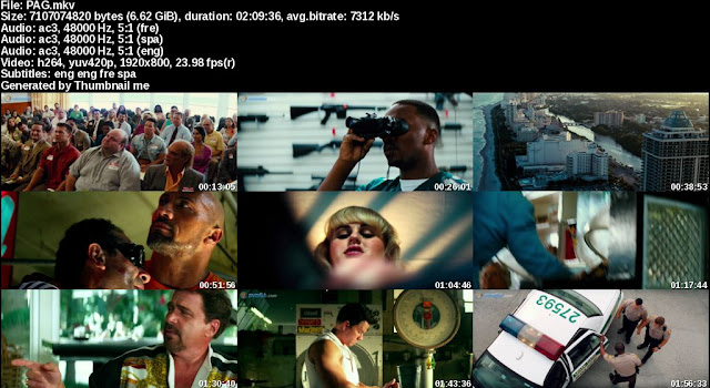 Pain and gain 2013 BD1080p Spanish latin/Eng/French+Subs PAG_s