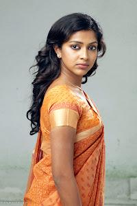 Amala Paul latest new cute looking tradition saree photos sexy stills