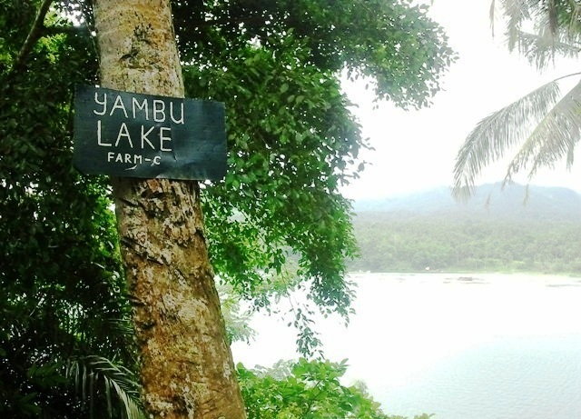 yambo lake, lake yambo, 7 lakes of san pablo, san pablo lakes, san pablo laguna, san pablo seven lakes, san pablo tourist attraction, lakes of san pablo, how to go to seven lakes of san pablo