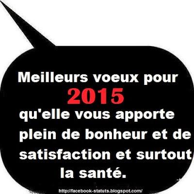 statut bonne année 2015