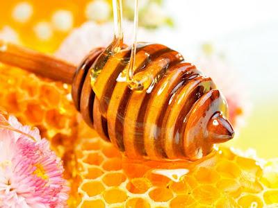 manfaat madu, khasiat untuk kesehatan