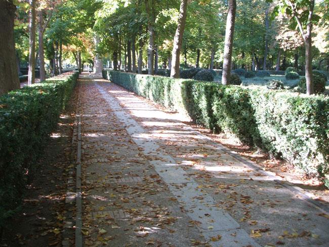 Aranjuez jard n de la isla paisaje libre - Oficina de turismo de aranjuez ...