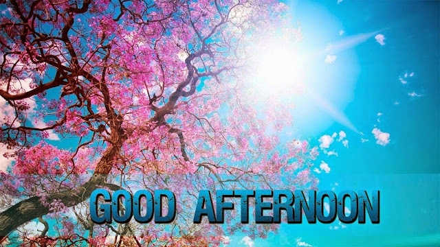 Wishing You a Good Afternoon Images 2015