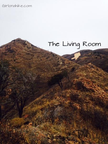 Marvelous The Living Room Hike, Utah, Hiking In Utah With Dogs