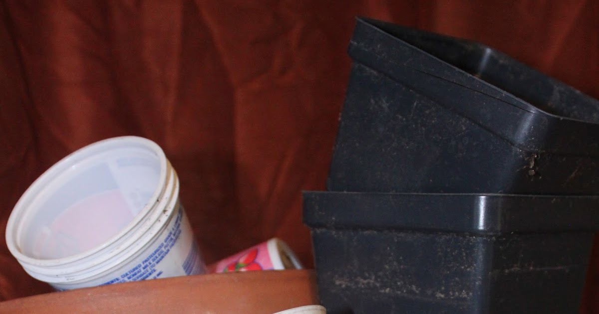 Why Sanitize? Spring Cleaning Your Containers.