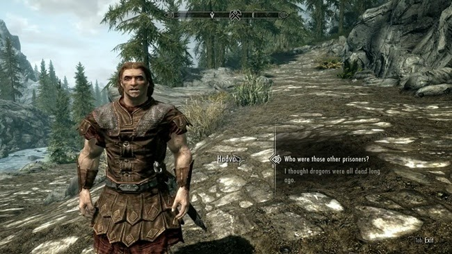 The Elder Scrolls V Skyrim PC Game