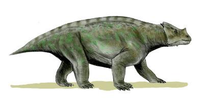 Arganaceras reptilia