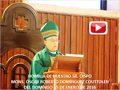 VIDEO DE LA HOMILÍA DEL SR. OBISPO, DEL DÍA 15 DE ENERO DE 2017