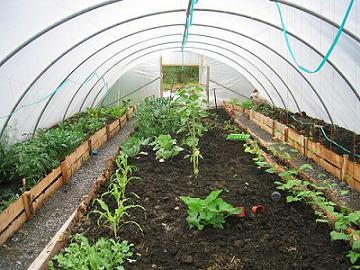 C mo construir invernaderos agrostart for Como realizar un vivero
