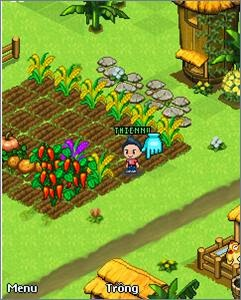 Tải Game Thần Nông Online - Game Nông Trại Java Hay Nhất
