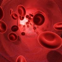 Arteria Vascular periferico