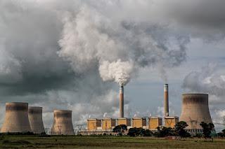pencemaran udara menyebabkan hilangnya keanekaragaman hayati