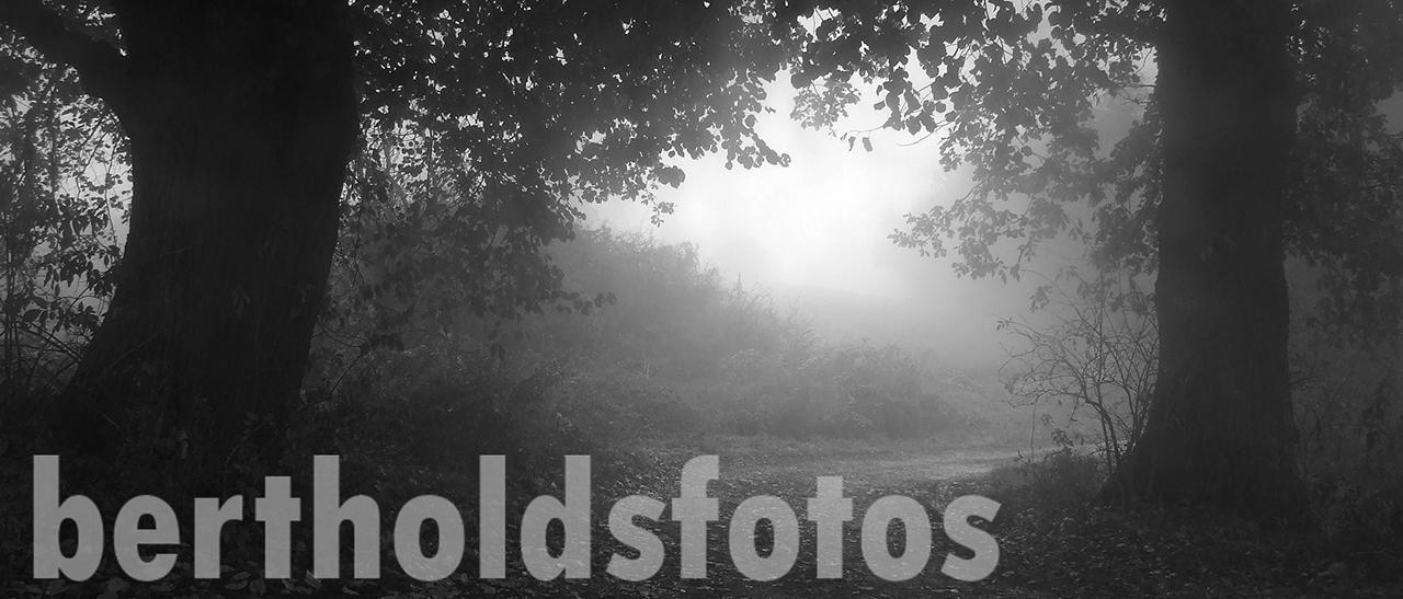 Bertholdsfotos