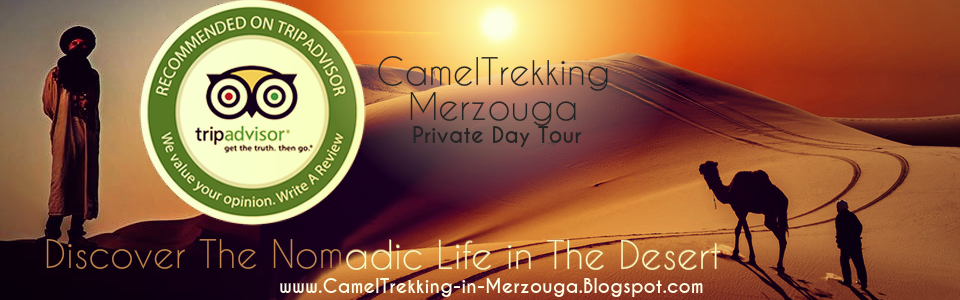 Camel Trekking in Merzouga - Overnight Desert Camp