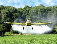 Um terço dos alimentos consumidos pelos brasileiros está contaminado por agrotóxicos