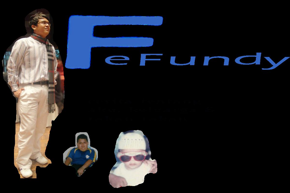 Fefundy