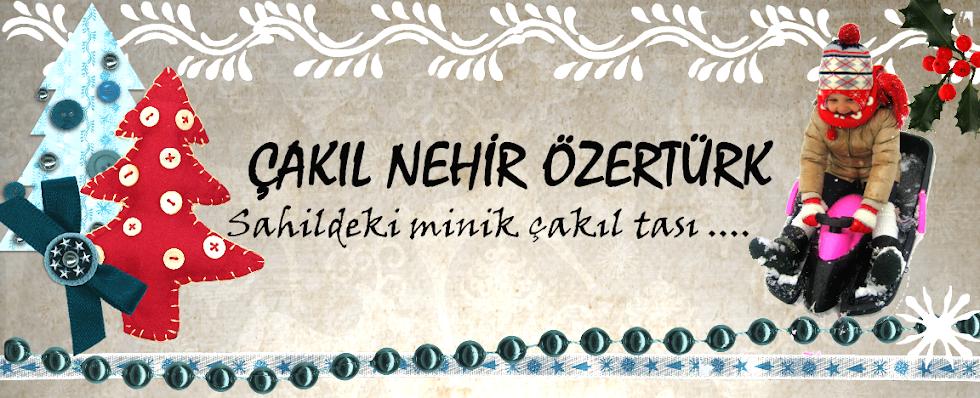 (ÇAKIL) Nehir Özertürk - web günlüğüm