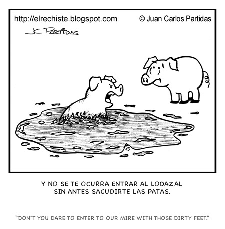 cerdos en lodazal