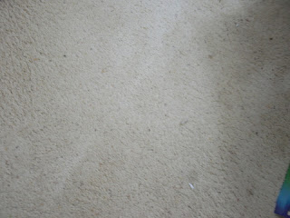 Small expanse of white carpet
