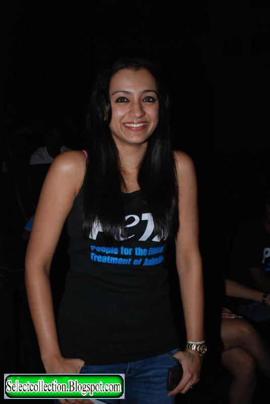 Trisha Latest,Trisha New,Trisha Movies,