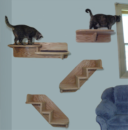 Old maid cat lady cats need to climb - Wall mounted cat climber ...