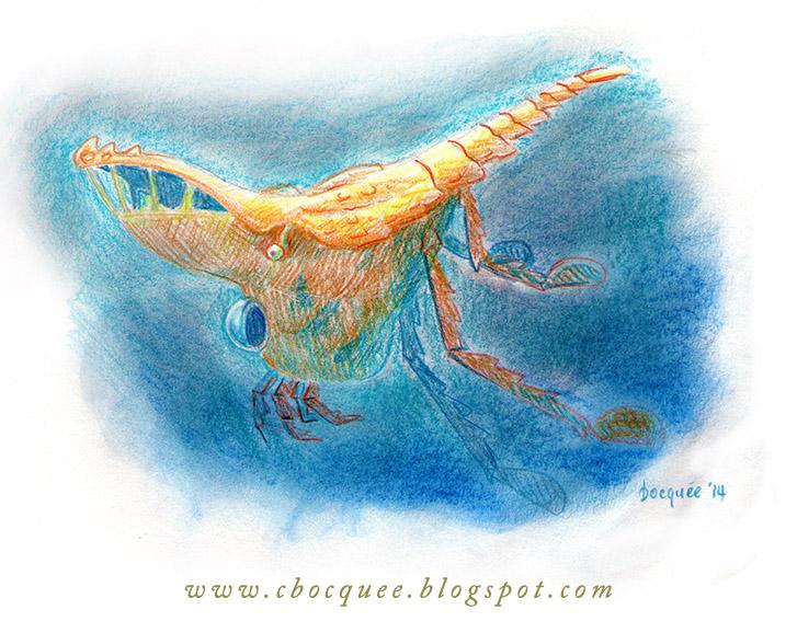 Crustacean submarine concept art illustration