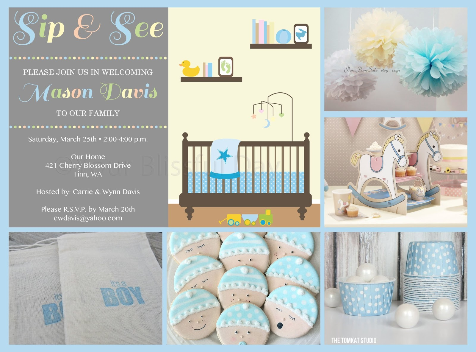 Your Blissful Day: Boy Sip and See Baby Shower Party Ideas