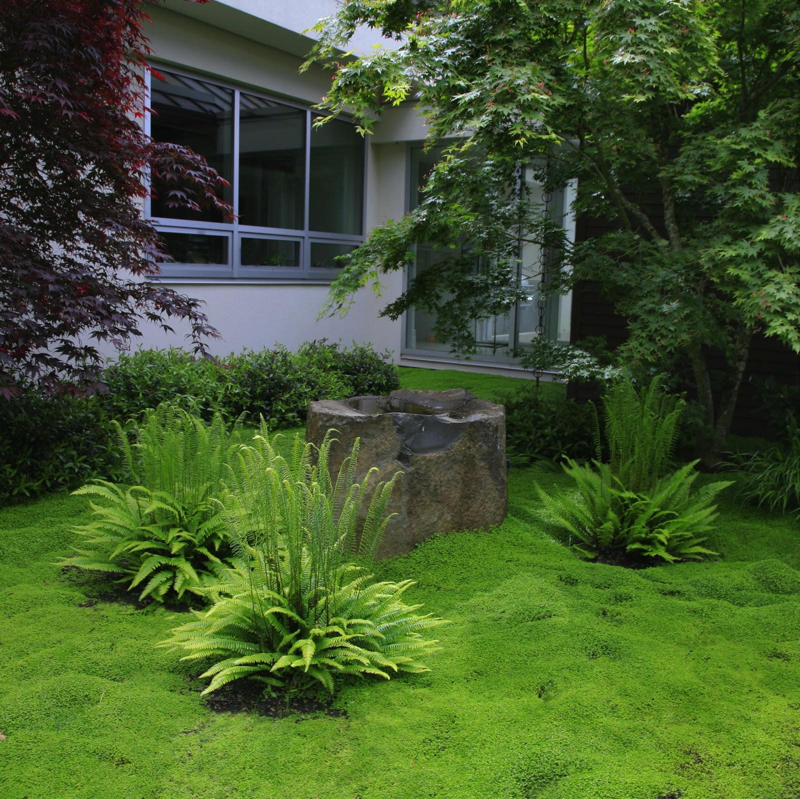 Contemporary Asian Inspired Garden