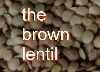 the brown lentil