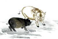 Ramalan Shio Babi Hari Ini November 2014