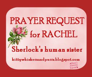 Prayers for Rachel