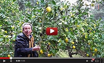 John Lemon fait son tour du monde de 80 jours à Menton (06).