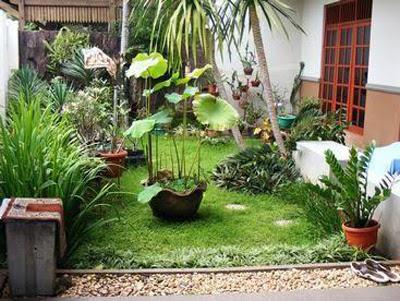 furniture interior: membuat taman di rumah minimalis